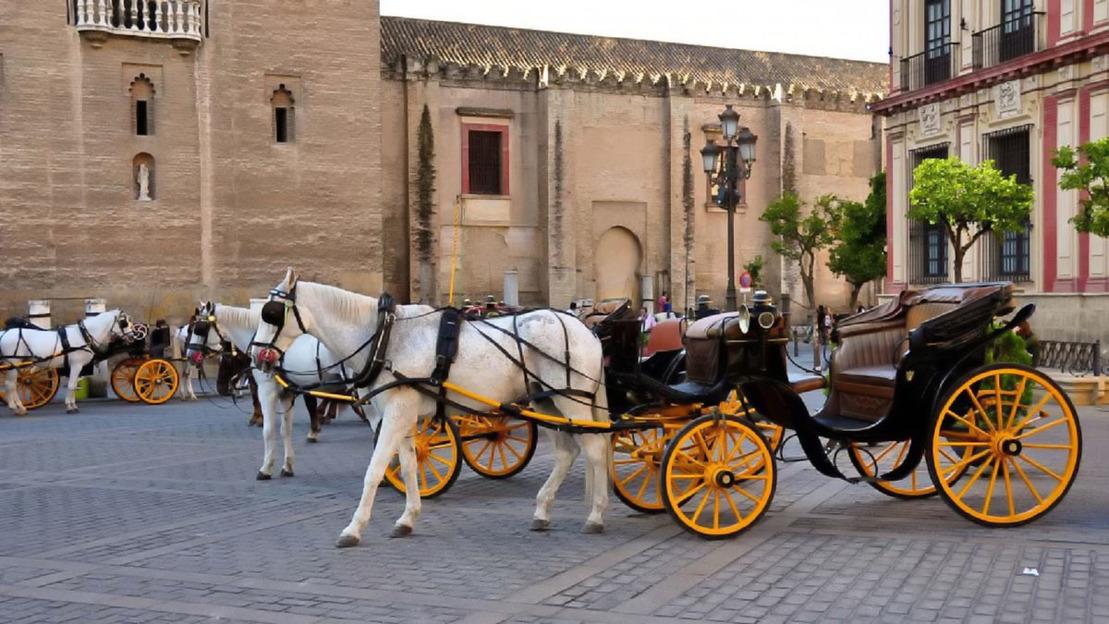 Visita guidata di Siviglia - Main image
