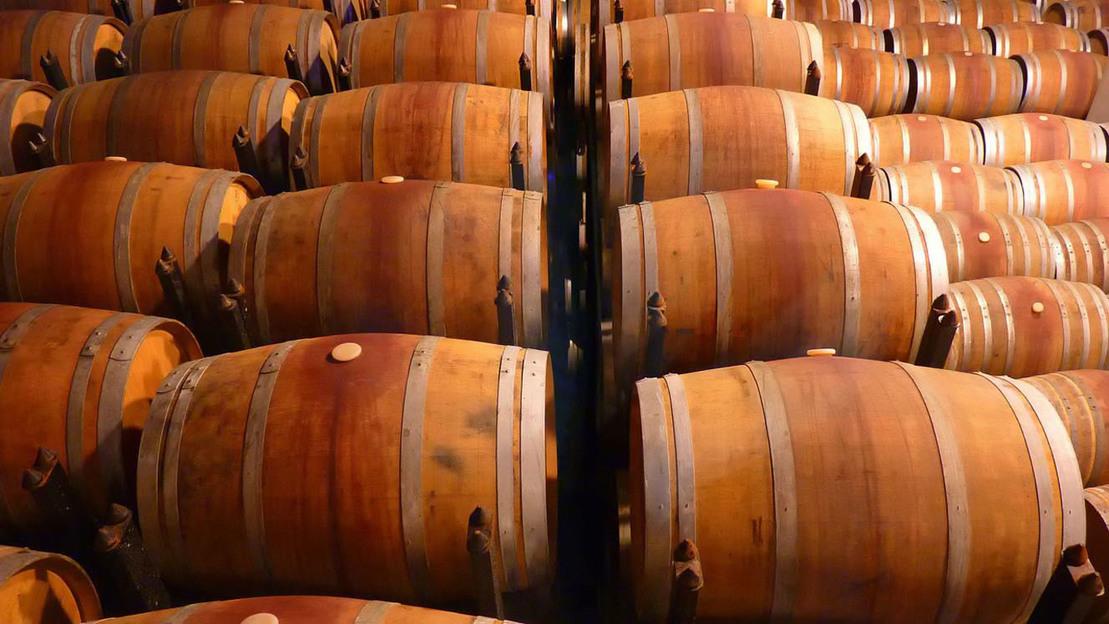 Tour enologico sui vini del Piemonte  - Main image