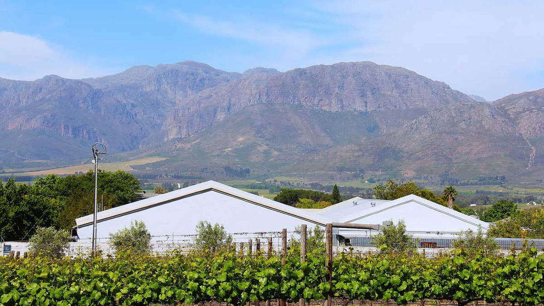 Winery tour in Cape Town - Main image