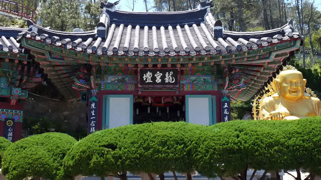 Visita guidata di Busan - Main image
