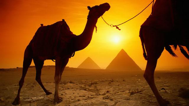 Escursione per le Piramidi di Giza, Sakkara e la Grande Sfinge - Main image