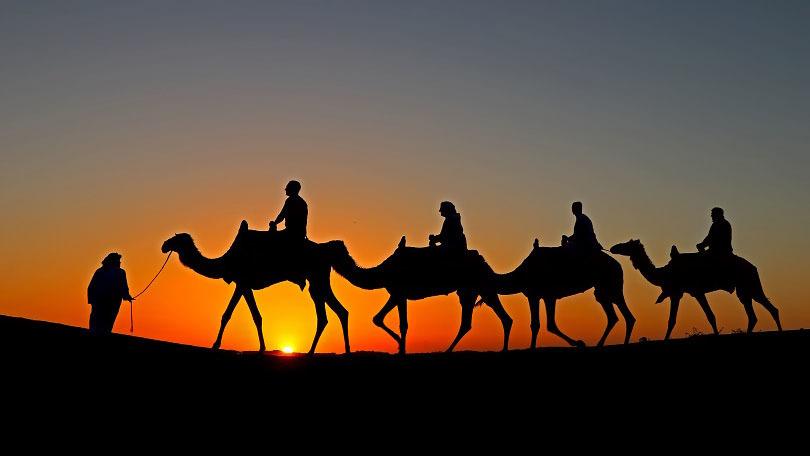 Dubai: tour notturno nel deserto sul cammello - Main image