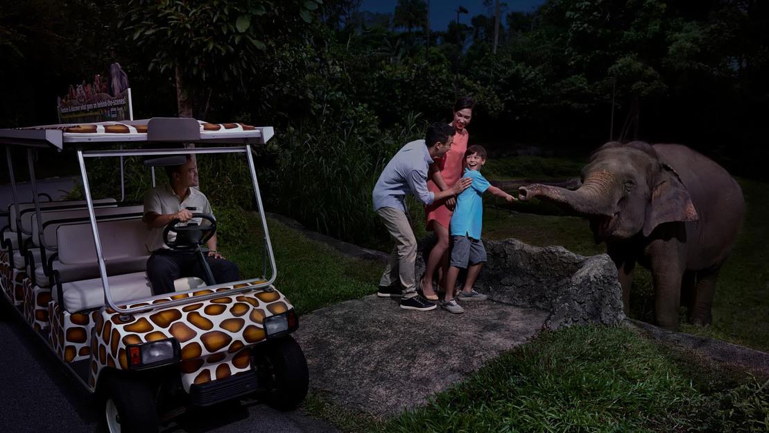 Safari notturno di Singapore - Main image