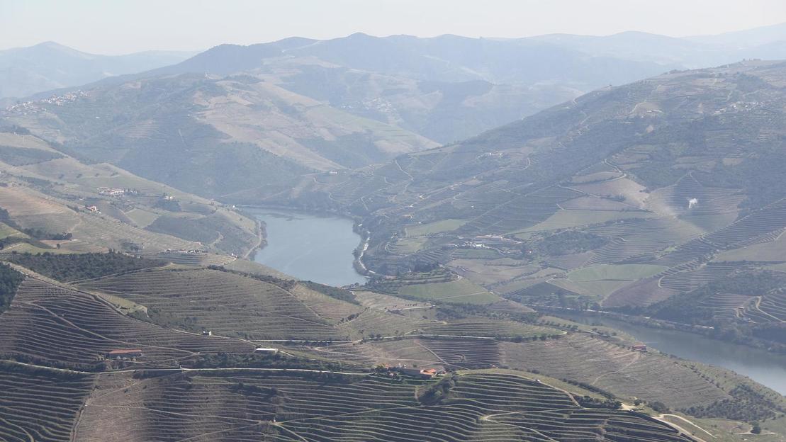 Valle del Douro | Crociera fluviale & Degustazione enogastronomica - Main image