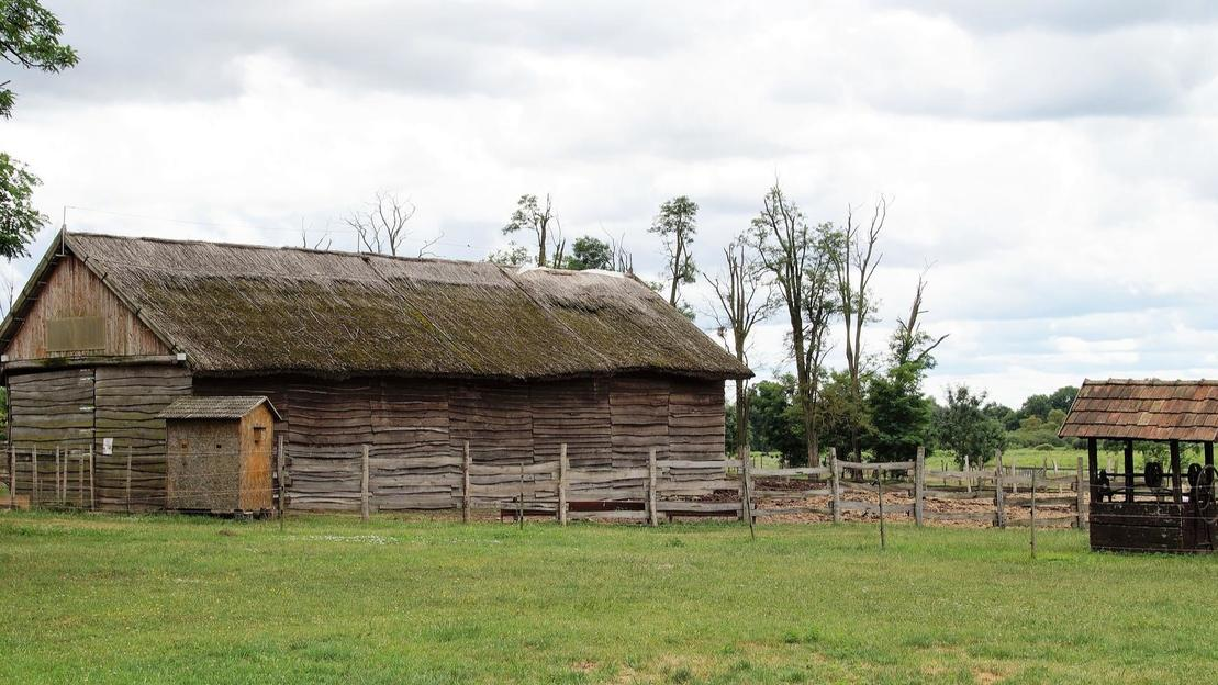 Visita guidata alla città di Puszta - Main image