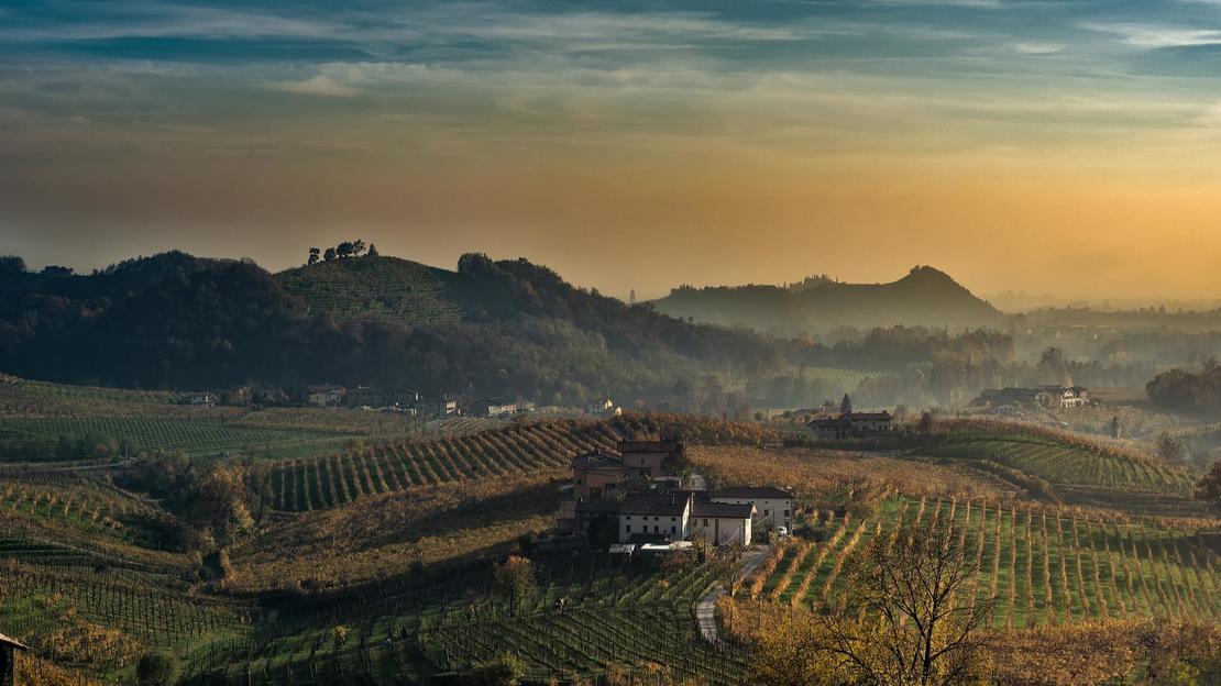 The Great Wine Tour: Scopri il Barolo e lo Spumante - Main image