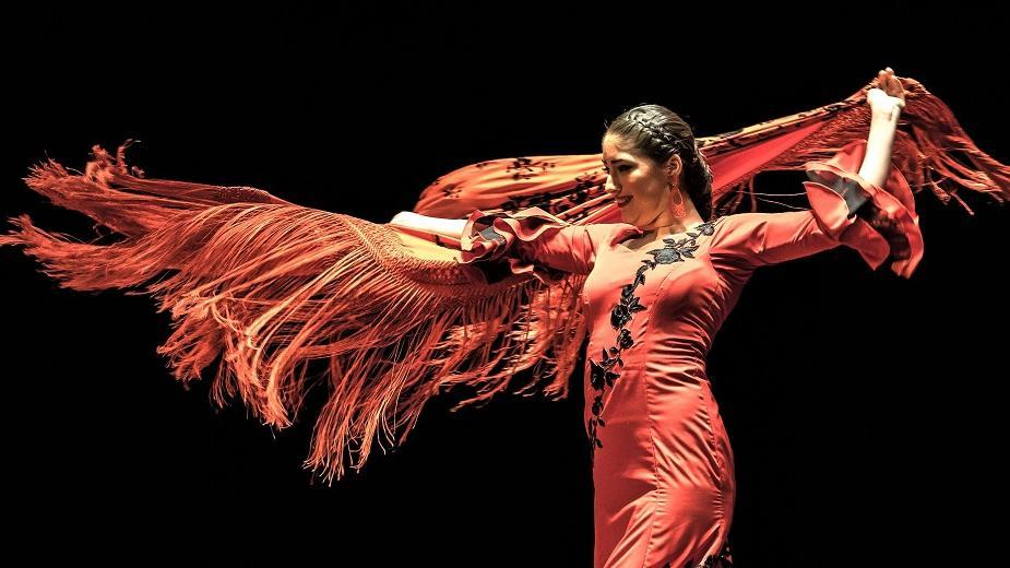 Flamenco night show  - Main image